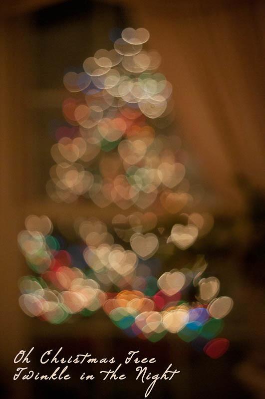 Bokeh Tree 2011