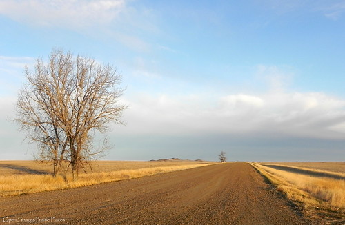 Tiger Butte Road, Near Fort Peck Montana