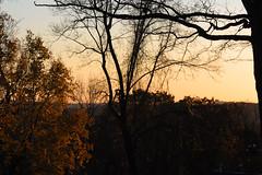 Morristown Autumn 2011