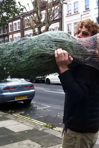 got our tree! now joe gets to carry it home