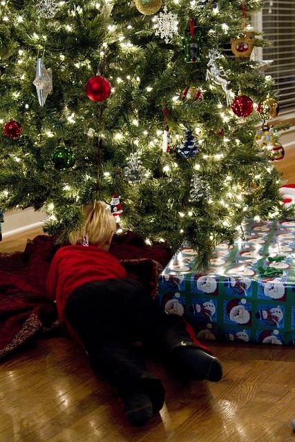 Blake under tree