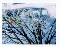 van/tree