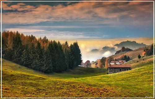 Gandino - Altopiano del Farno 1260 m - (Motivo autunnale - Reason autumn) by cicrico