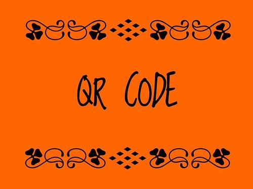 Buzzword Bingo: QR Code (2011)