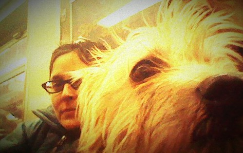 Rosco-Biella-on-Train