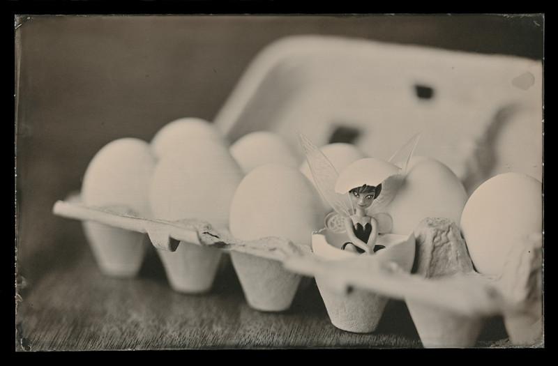 eggies s
