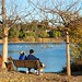 Small photo of Couple watching the birds on Almaden Lake