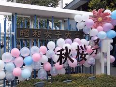 fes2011-昭和女子大学-秋桜祭-01