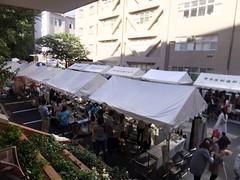 fes2011-東京医科歯科大学-お茶の水祭-02