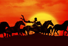 [Free Images] Graphics, Photo Manipulation, Horses, Men, Sunrise / Sunset ID:201201022200