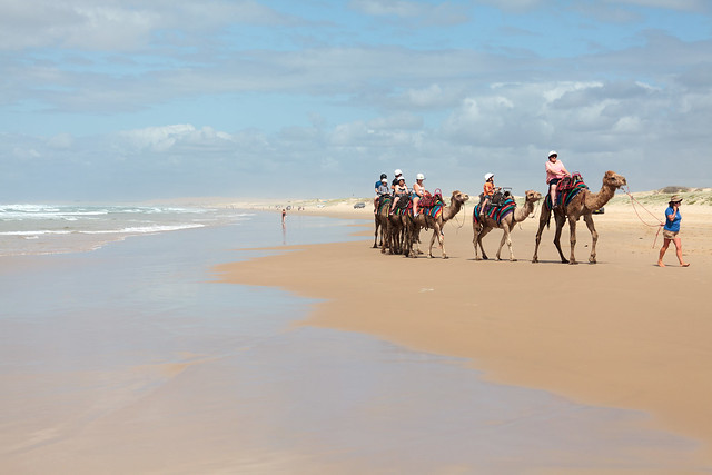 Stockton Beach, NSW, Australia