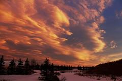 [フリー画像素材] 自然風景, 朝焼け・夕焼け, 雲, 空 ID:201201081800