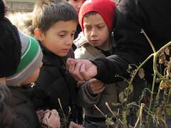 Ricominciamo a coltivare nelle scuole 54