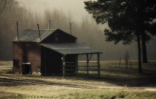 morning trees fog barn sunrise canon pond farm northcarolina bunn franklincounty 450d ortoneffect imaginefotocom