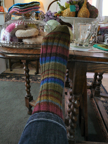 First KF Regia sock