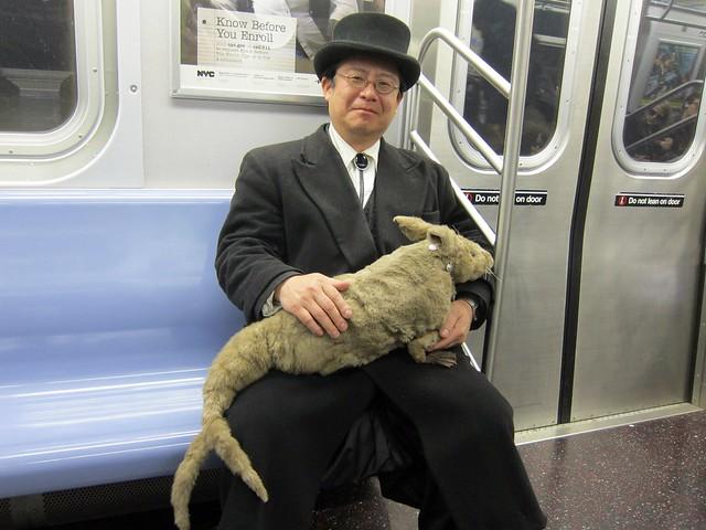 Takeshi Yamada and Seara the Sea Rabbit on the F train