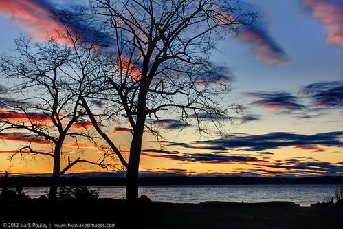 sunset tree water washington shadows silhoette kayakpt