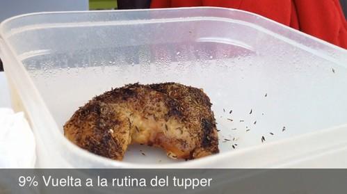 9% Vuelta a la rutina del tupper