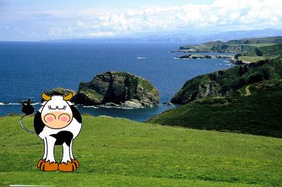 Paisaje con vaca by jesusangelpardoalvarez