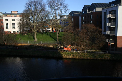 Water of Leith trees chopped