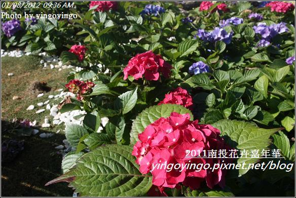 2011南投花卉嘉年華20120108_I2345