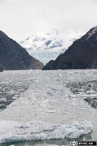 20110505-Alaska2011-D2-DSC_5240-2.jpg