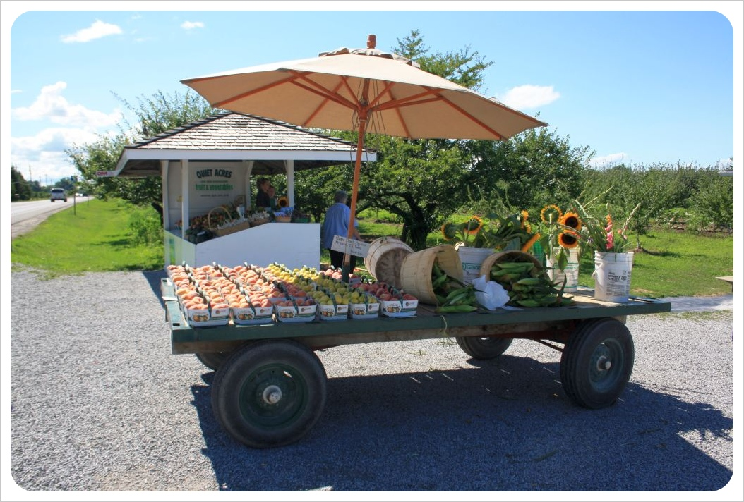 niagara wine country fruit stand