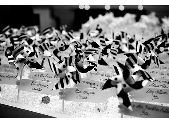 Pinwheel Wedding - Photos Courtesy of Taryn 1