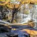 Reedy Falls-3503