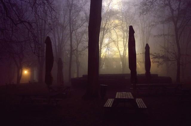 Listopadovy vecer na Petrine/November evening at Petrin hill 1
