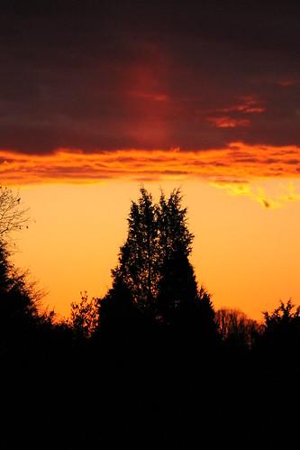 sunset orange silhouette clouds