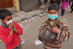 Children rescue cat from riot in Cairo, Egypt 3/2/12
