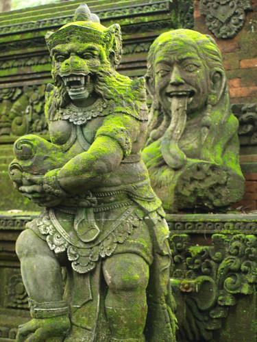 бали, обезьяны17