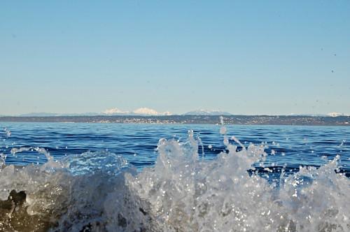 wave ~~~