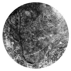 drain6