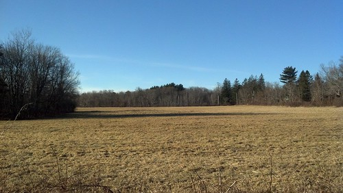 Franklin: winter fields