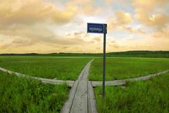 Kuusamo Nature Photo - Päätepysäkki