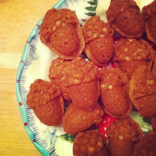 acorn cakelets
