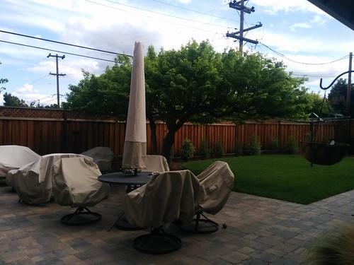 yard again