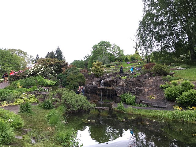 The rock garden at the Botanical Gardens in Oslo