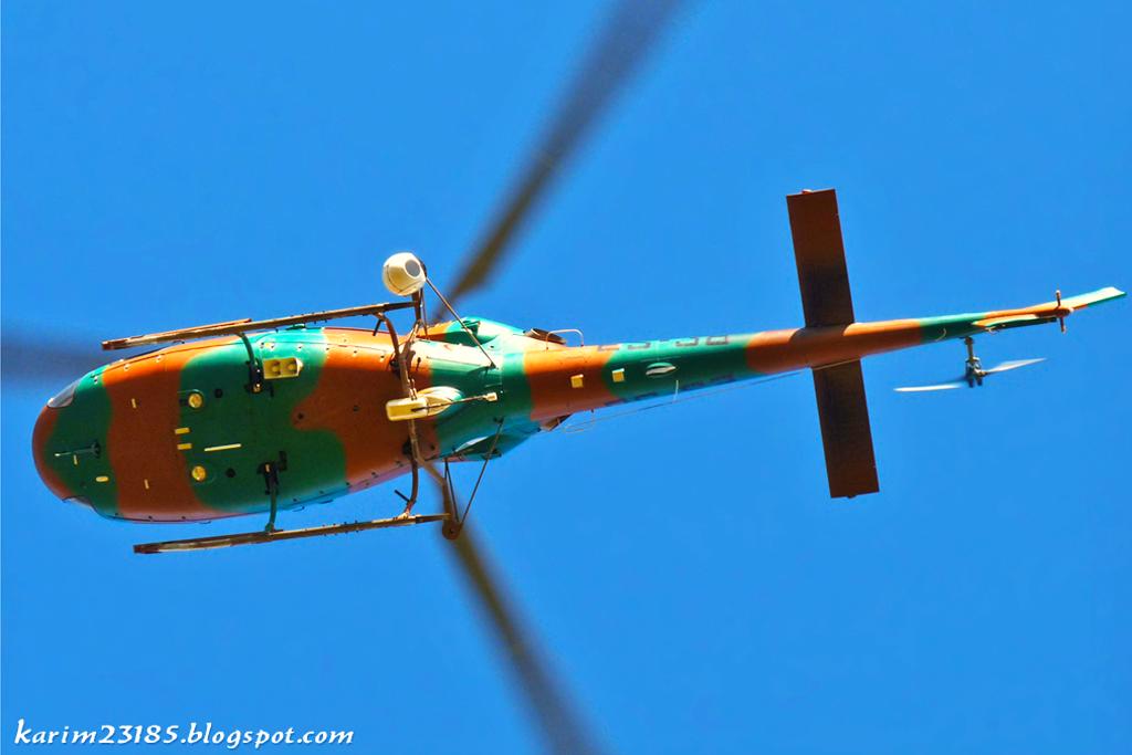 صور مروحيات القوات الجوية الجزائرية Ecureuil/Fennec ] AS-355N2 / AS-555N ] - صفحة 6 27322964131_aa20a03049_o