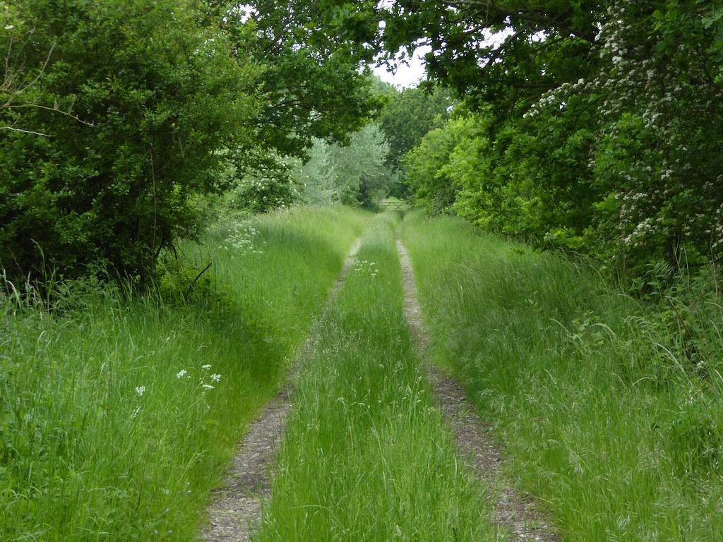 Old railway line Thame Circular walk, Shabbington shortcut