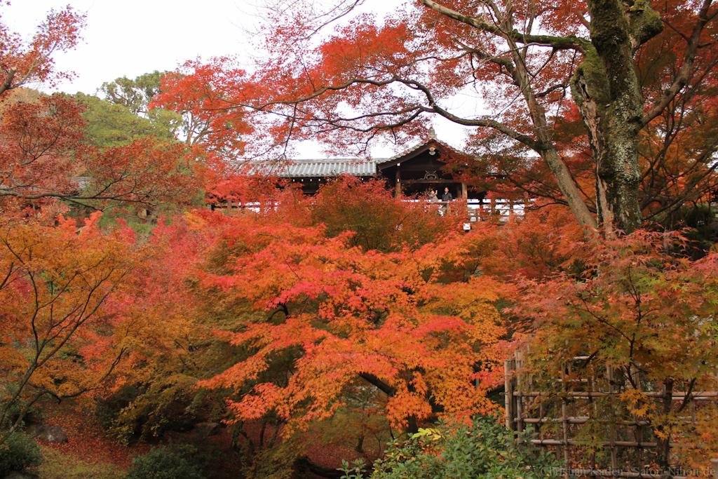 Tofukuji Temple, Kyoto