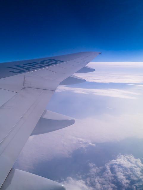 flight-8