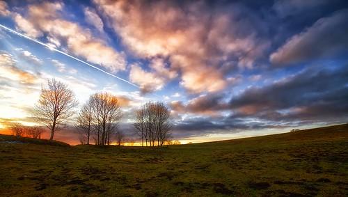 sunset sky sun france tree nature colors field clouds canon landscape photography eos soleil photo couleurs champs coucher meadow sigma wideangle explore ciel 7d prairie 1020mm nuages paysage campagne arbre franchecomté philippesaire