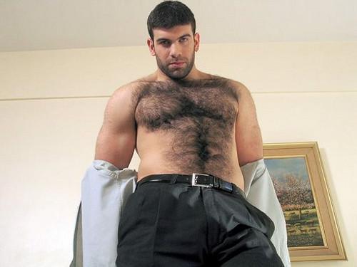 hairy arab
