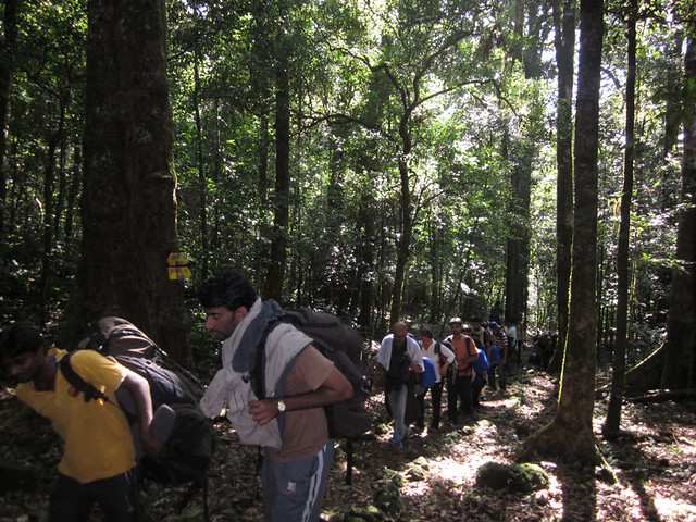 Kumara_Parvatha_Trek_On_the_way_to_Pushpagiri1