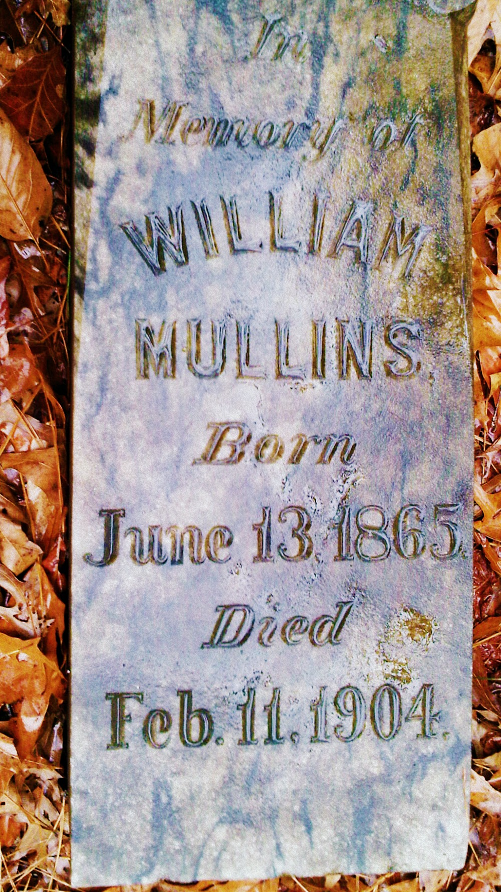 William Mullins-Mullins Cemetery, Meriwether County, Ga