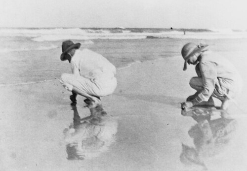 goldcoast goldcoastbeaches beach southport queensland surf summer statelibraryofqueensland historic mensfashion womensfashion slq sandworms digging reflection women men 1930