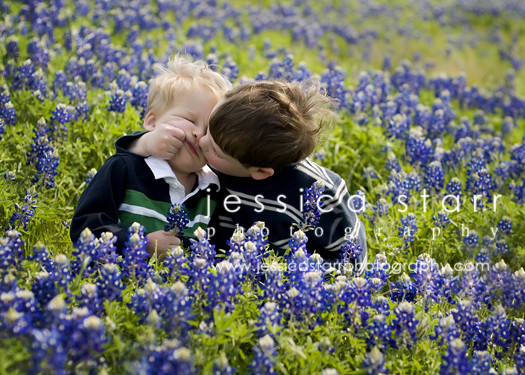 bluebonnets01WEB